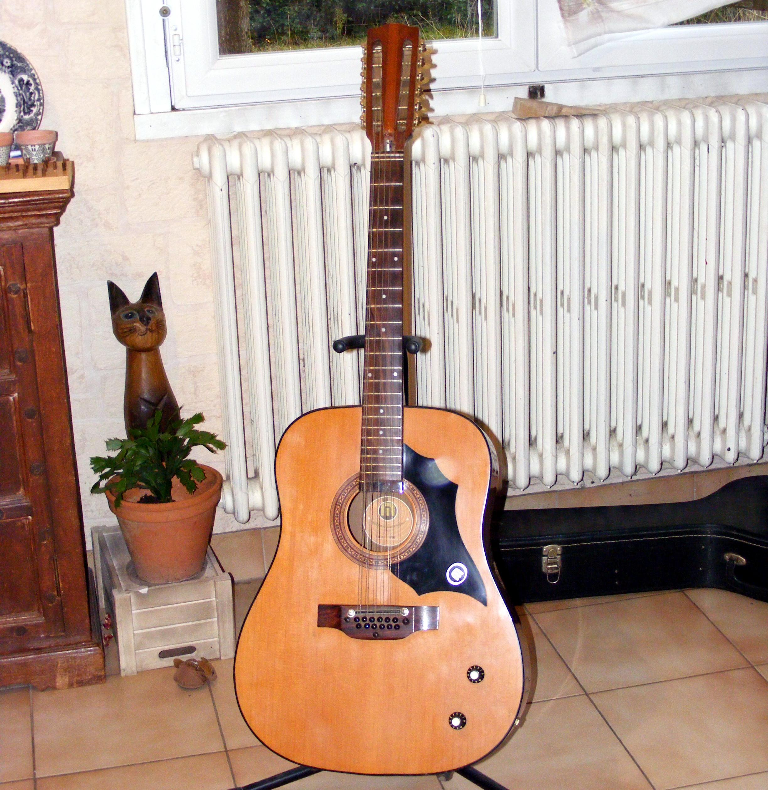 Melody Guitars mod. 1250 12 cordes, électro-acoustique ...