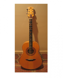 La guitare de Jon Sevy dont la fabrication est détaillée étape par étape dans son guide